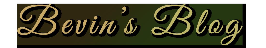 Bevin's blog logo